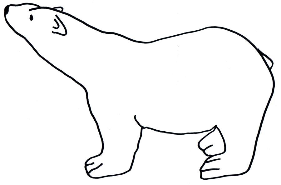 900x592 Polar Clipart Outline