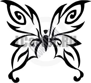 300x274 20 Best Butterflies Images Butterfly, Celebrity