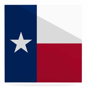 299x299 Texas Flag Wall Art Wayfair