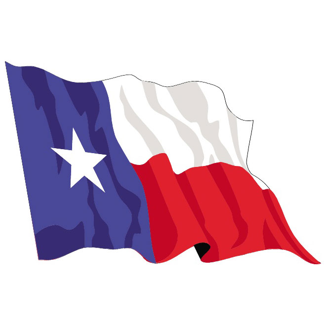 660x660 Texas Vector Flag