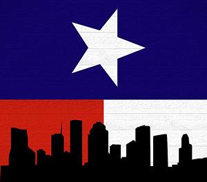 300x264 Texas Flag Art
