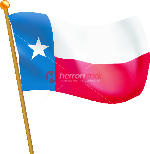 576x591 Texas State Flag