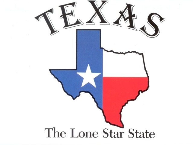 640x480 State Of Texas Logo 1 Health Care Logos Clip Art