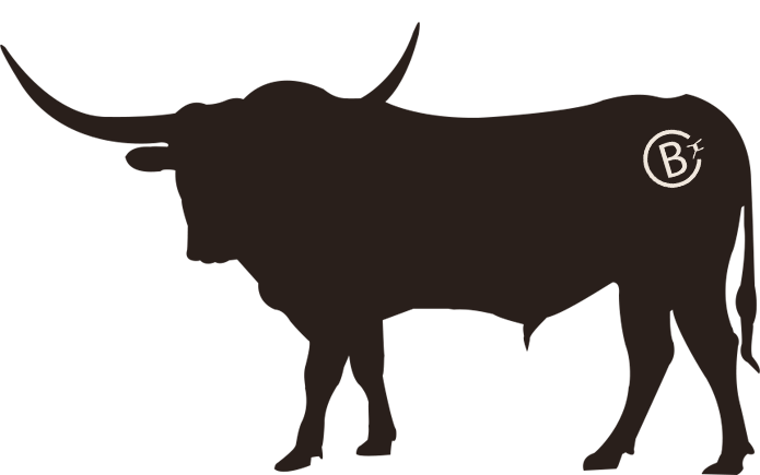 695x435 Barbed C Ranch Near Sugar Land, Tx Raises Registered Texas Longhorns.