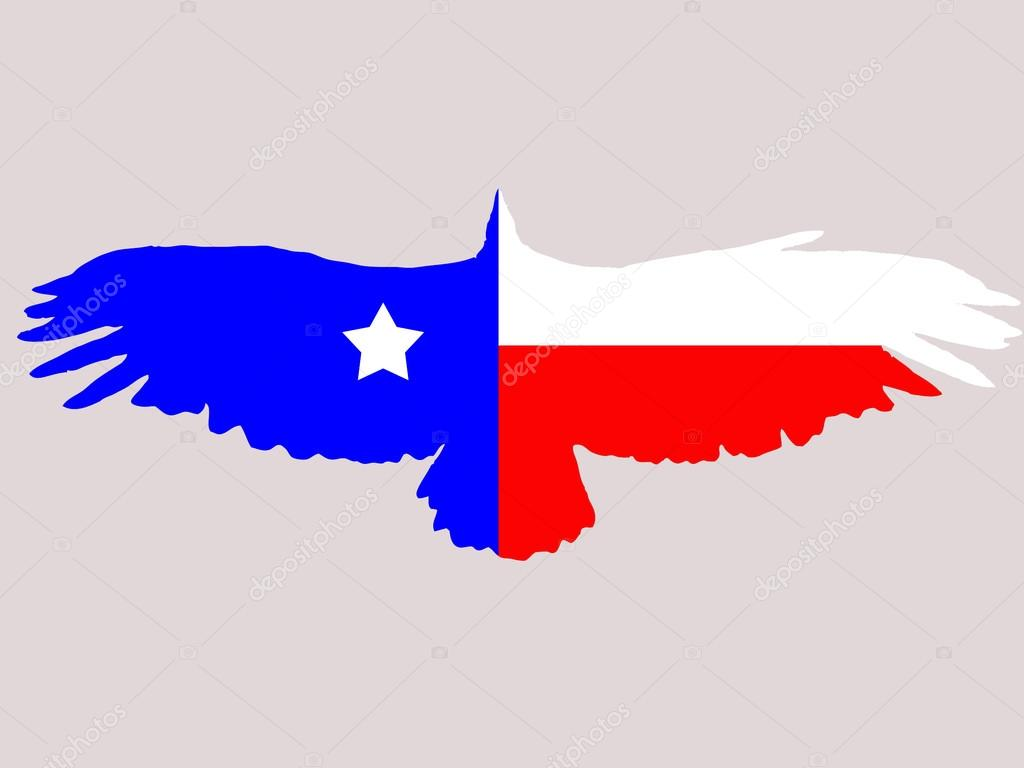1024x768 Texas Flag Stock Vector Mihail1981