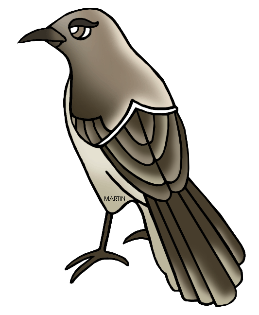 533x648 United States Clip Art By Phillip Martin, Texas State Bird
