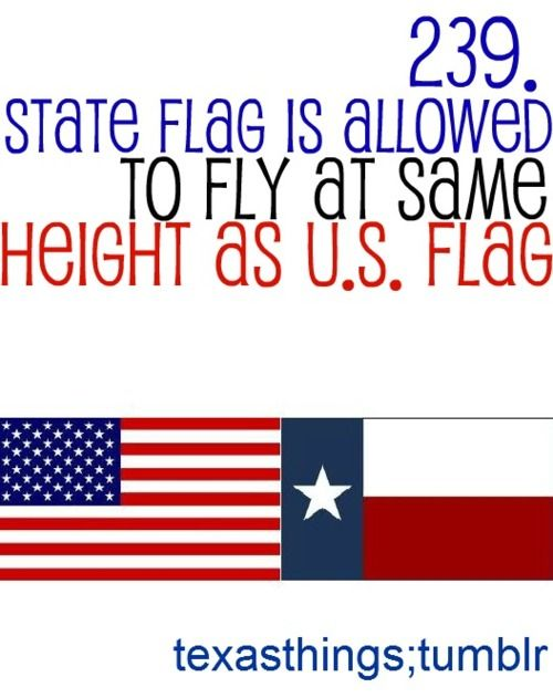 500x631 FACT Texas is the ONLY state that can fly it#39s flag the same