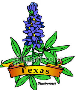 254x300 State Flower Clipart