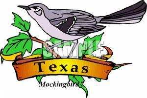300x201 Texas State Bird And Flower Best Bird 2017