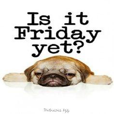 236x236 Tgif. Have A Fab Weekend Everyone) Humor Tgif