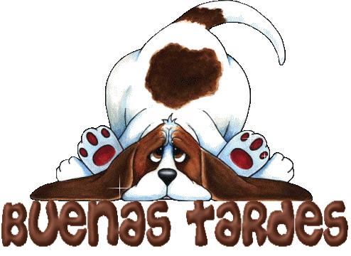 494x360 Muy Buenas Tardes Amig@s Los Pines Preferidos De Www