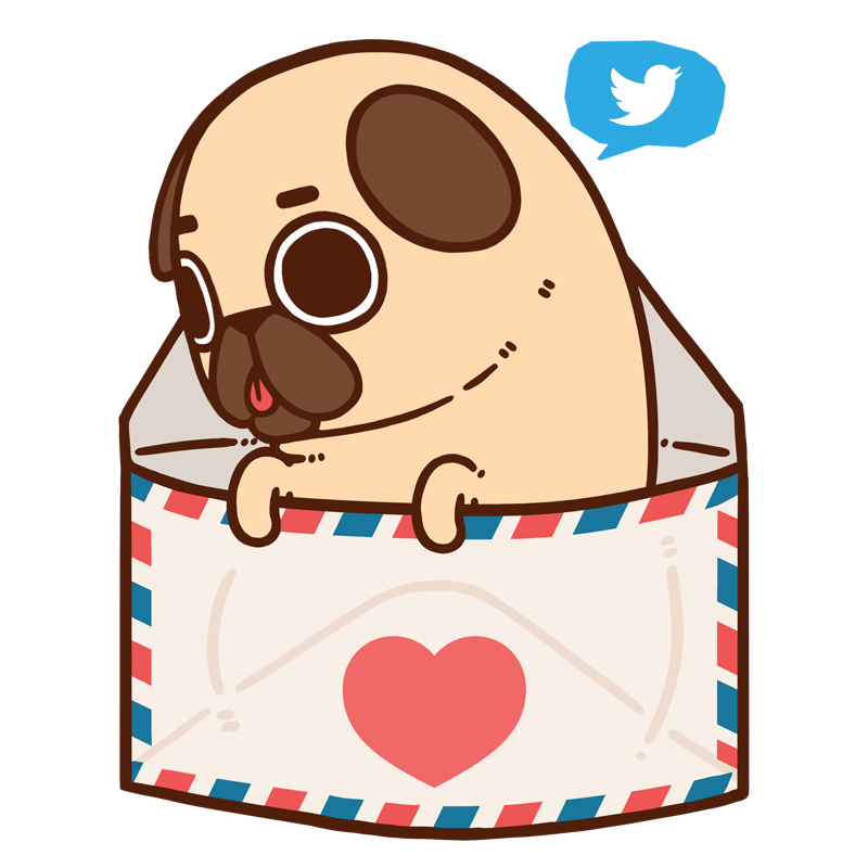 800x800 Puglie Pug Puglie Now Has A Twitter Account To Keep You
