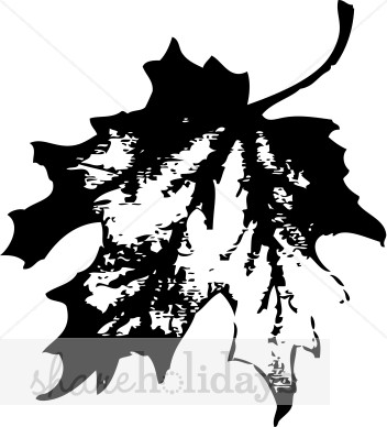 352x388 Black Maple Leaf Clipart Thanksgiving Clipart amp Backgrounds
