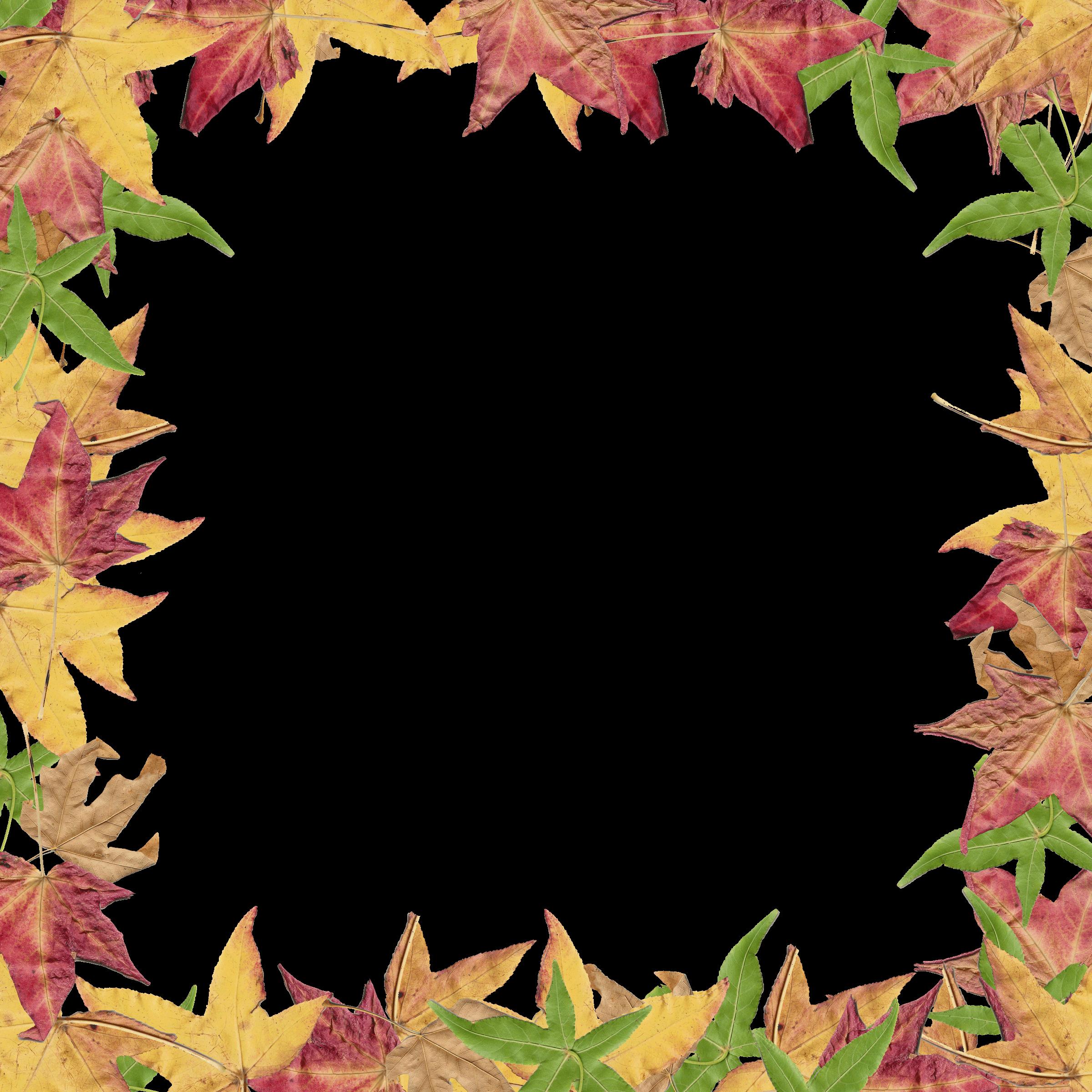 2400x2400 Thanksgiving Leaf Borders Clip Art Happy Thanksgiving