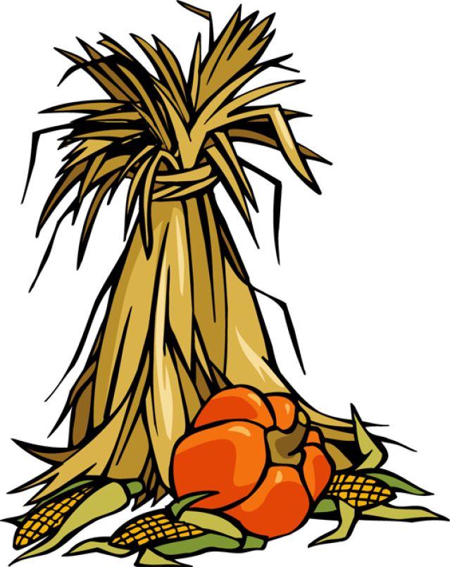 Thanksgiving Corn Clipart