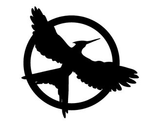 331x257 32 Best Hunger Games Decorations Images Bronze