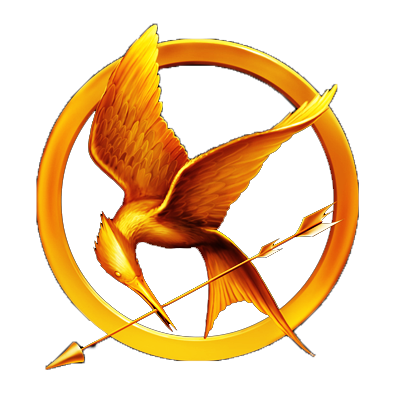 400x400 The Hunger Games By Ricchi Com