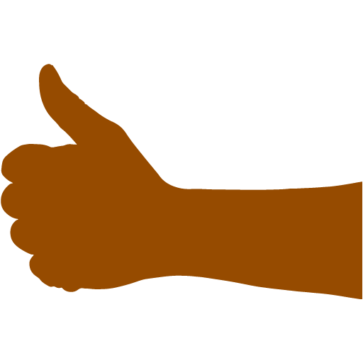 512x512 Brown Thumbs Up 2 Icon