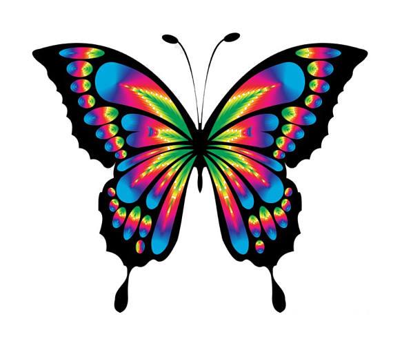 570x488 Bright Butterfly Tie Dye Cross Stitch Pattern Fun Pattern Cross