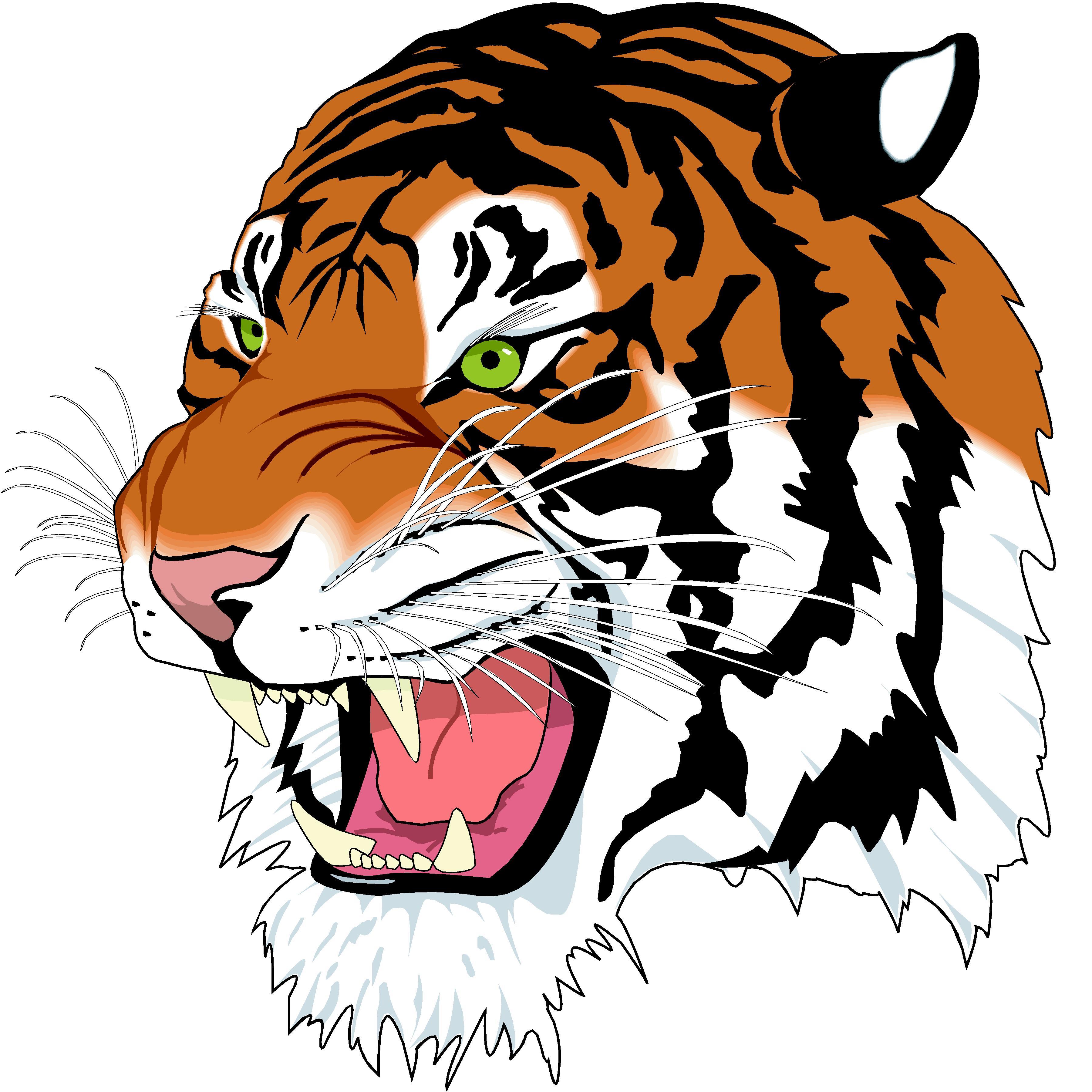 3600x3600 Tiger Head Clip Art