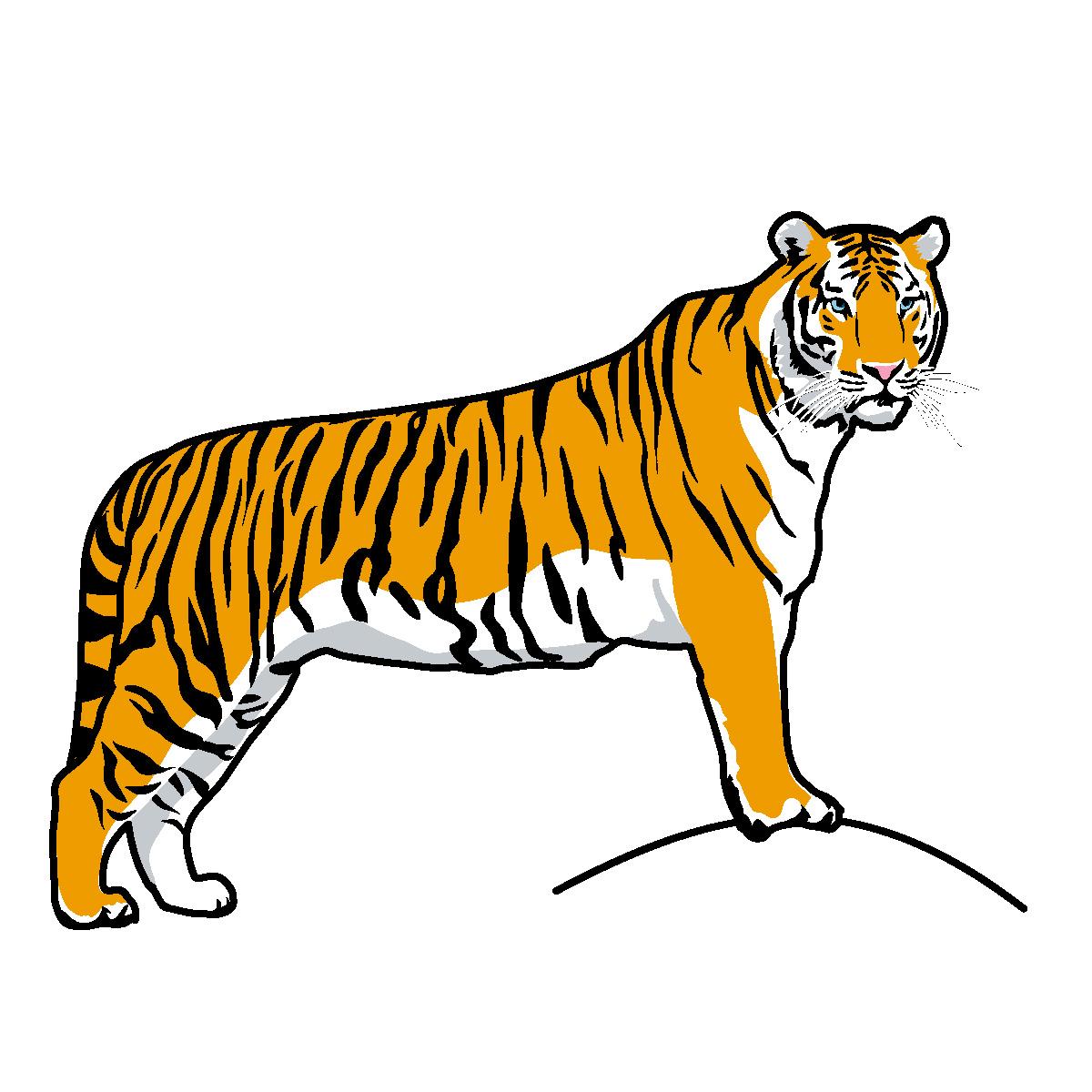1200x1200 Tiger clip art free clipart images 2