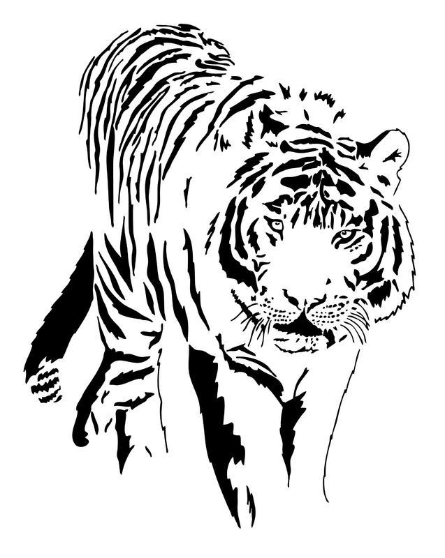 637x800 White Tiger Clip Art