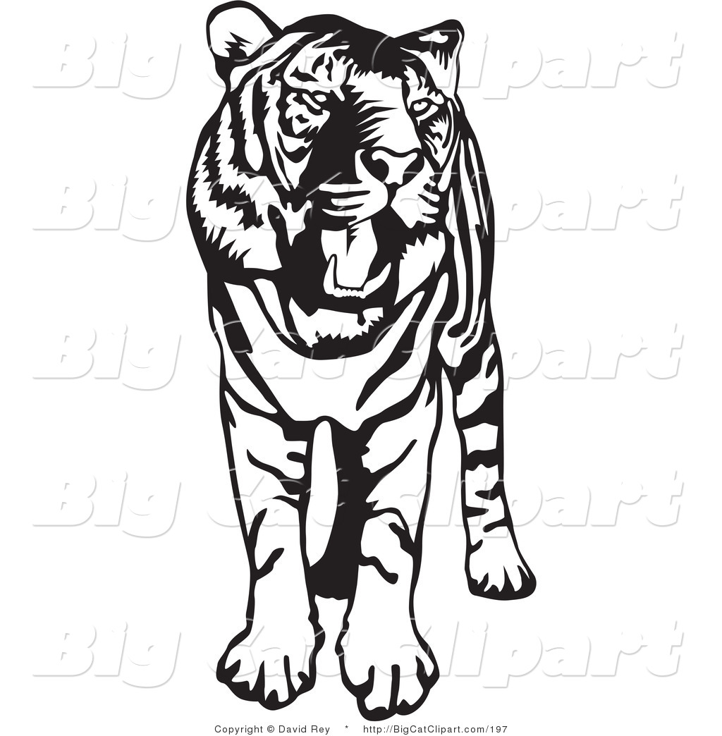 1024x1044 Big Cat Vector Clipart of a Standing Black and White Tiger with