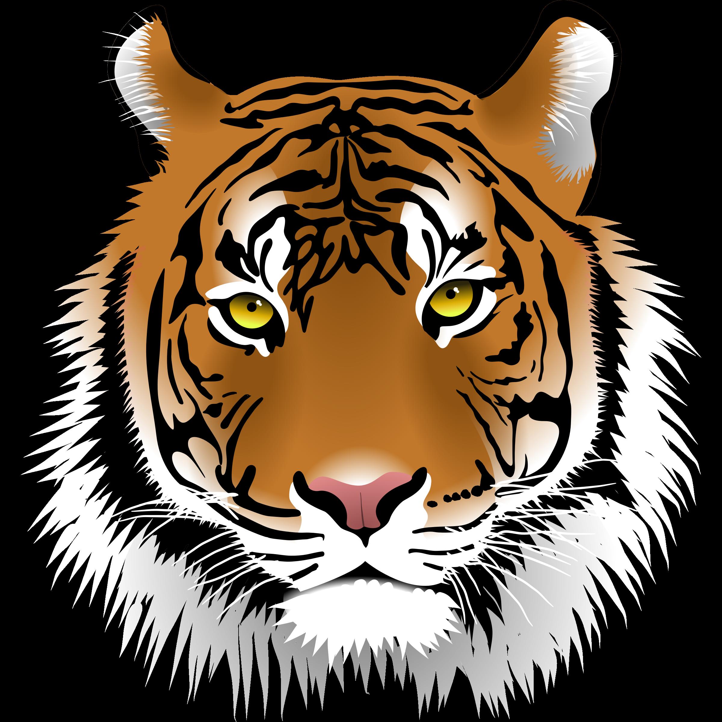 2400x2400 Tiger clipart tiger image