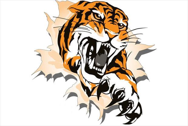620x418 Tiger head clip art free clipart images