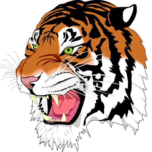 500x500 Free Tiger Face Clipart Image