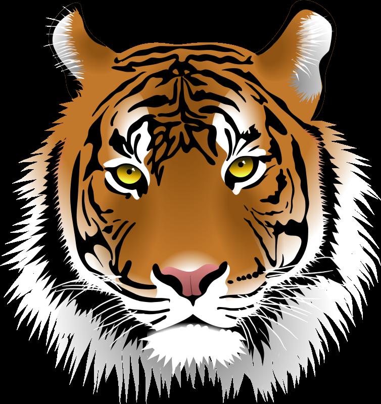 754x800 Tiger Face Clip Art