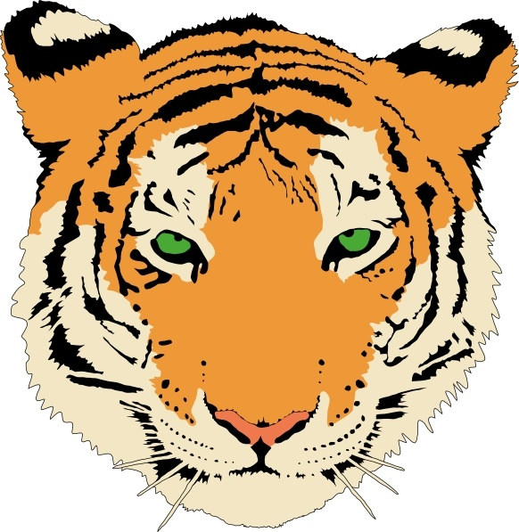 582x597 Tiger clip art Free vector in Open office drawing svg ( svg