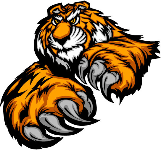 544x508 Tiger head free clip art free vector download (213,765 Free vector