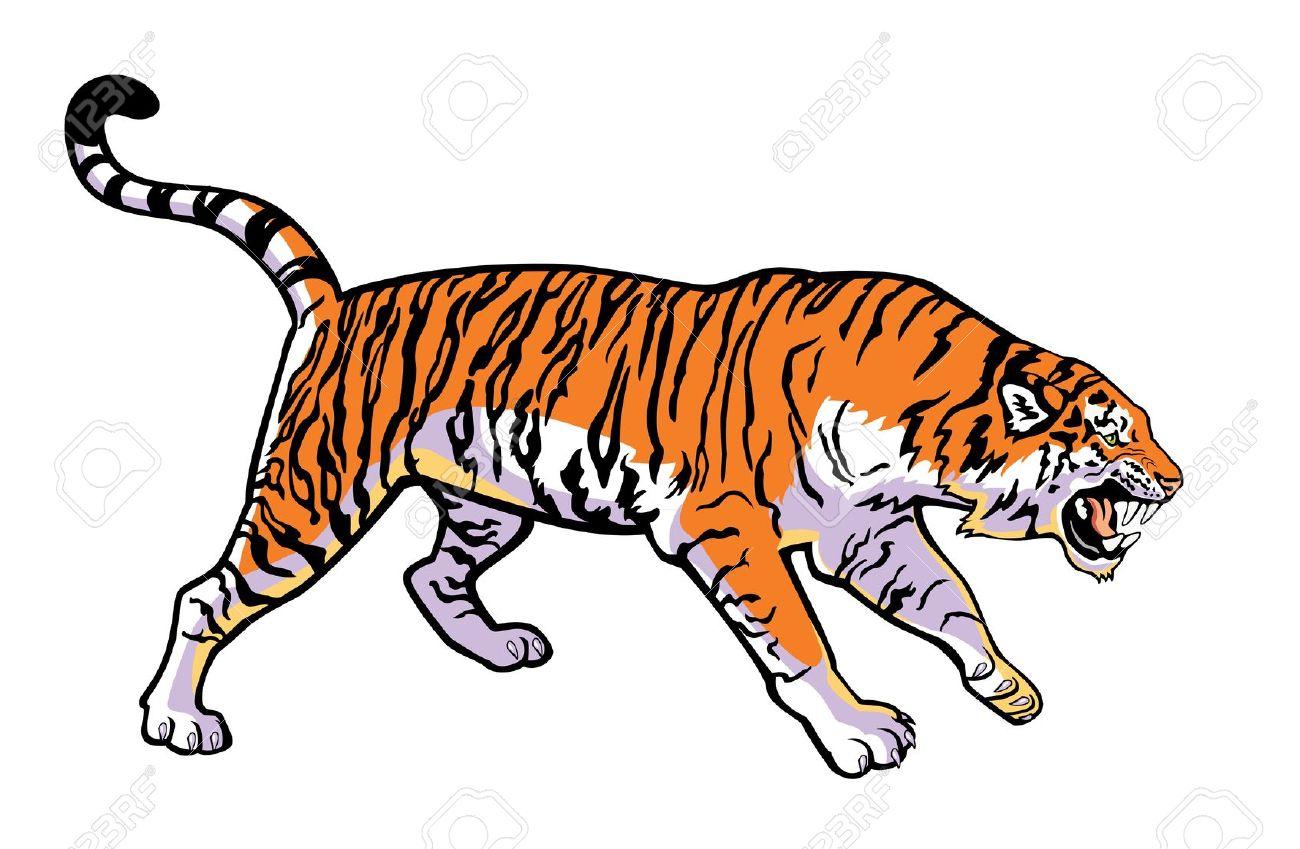 1300x849 Top 91 Tiger Clip Art