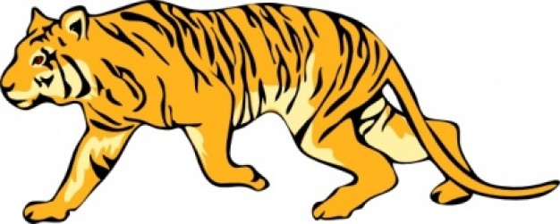 626x251 yellow tiger clip art walking in side view download Free Animal