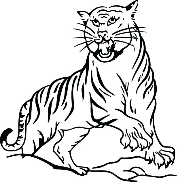 618x631 Tiger Coloring Picture Coloring Page Tiger Animals 9 Printable
