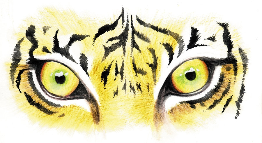 900x490 Eye Of The Tiger Clipart
