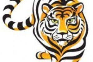 300x200 eye of the tiger clipart
