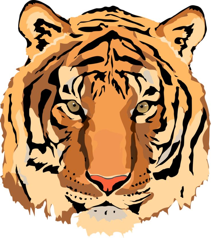 Tiger Eyes Clipart