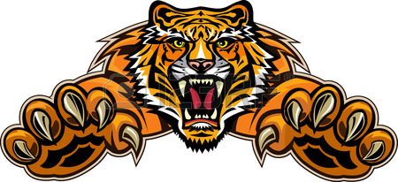 450x206 3,207 Tiger Eye Stock Vector Illustration And Royalty Free Tiger
