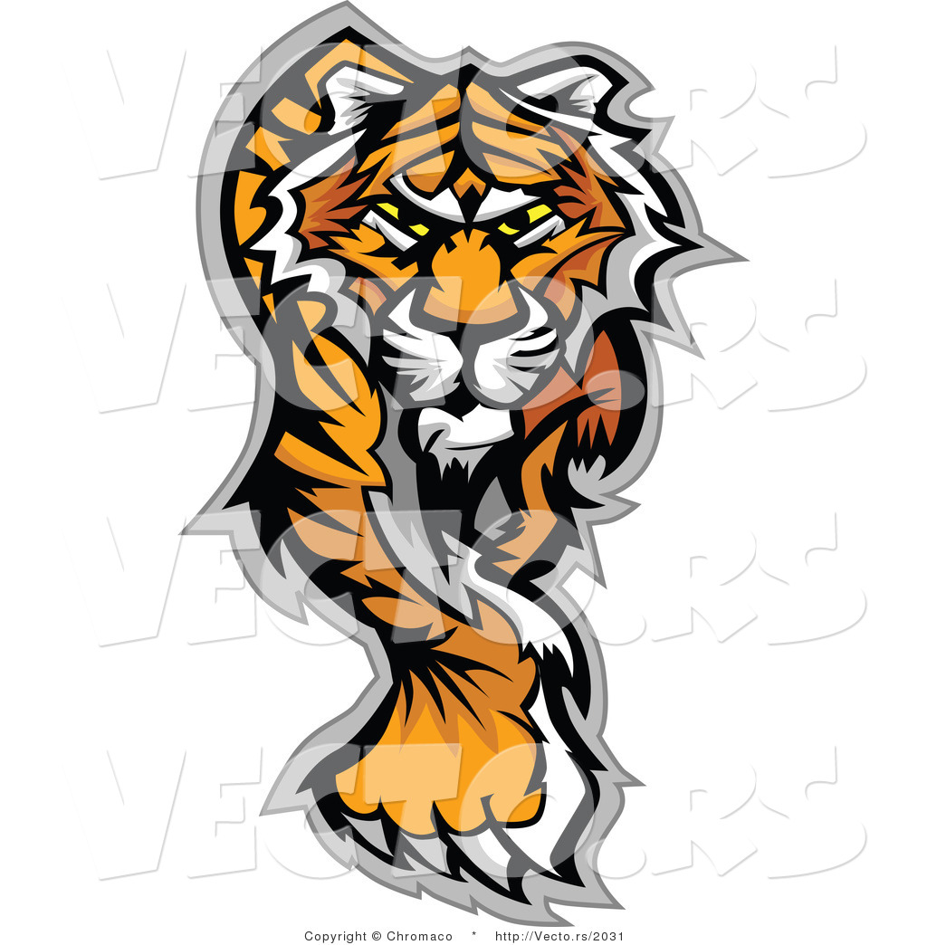 1024x1044 Vector Of An Alpha Cartoon Tiger Walking Dominantly Forward While