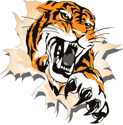 413x418 Bengal Clipart Tiger Eyes