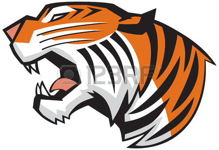 450x309 Tiger Claw Rip Mark, With Tiger Face Behind It Royalty Free