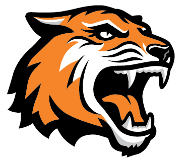 379x328 Tiger Face Clipart