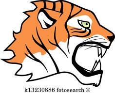 236x194 Tiger Face Clip Art Royalty Free. 2,162 Tiger Face Clipart Vector