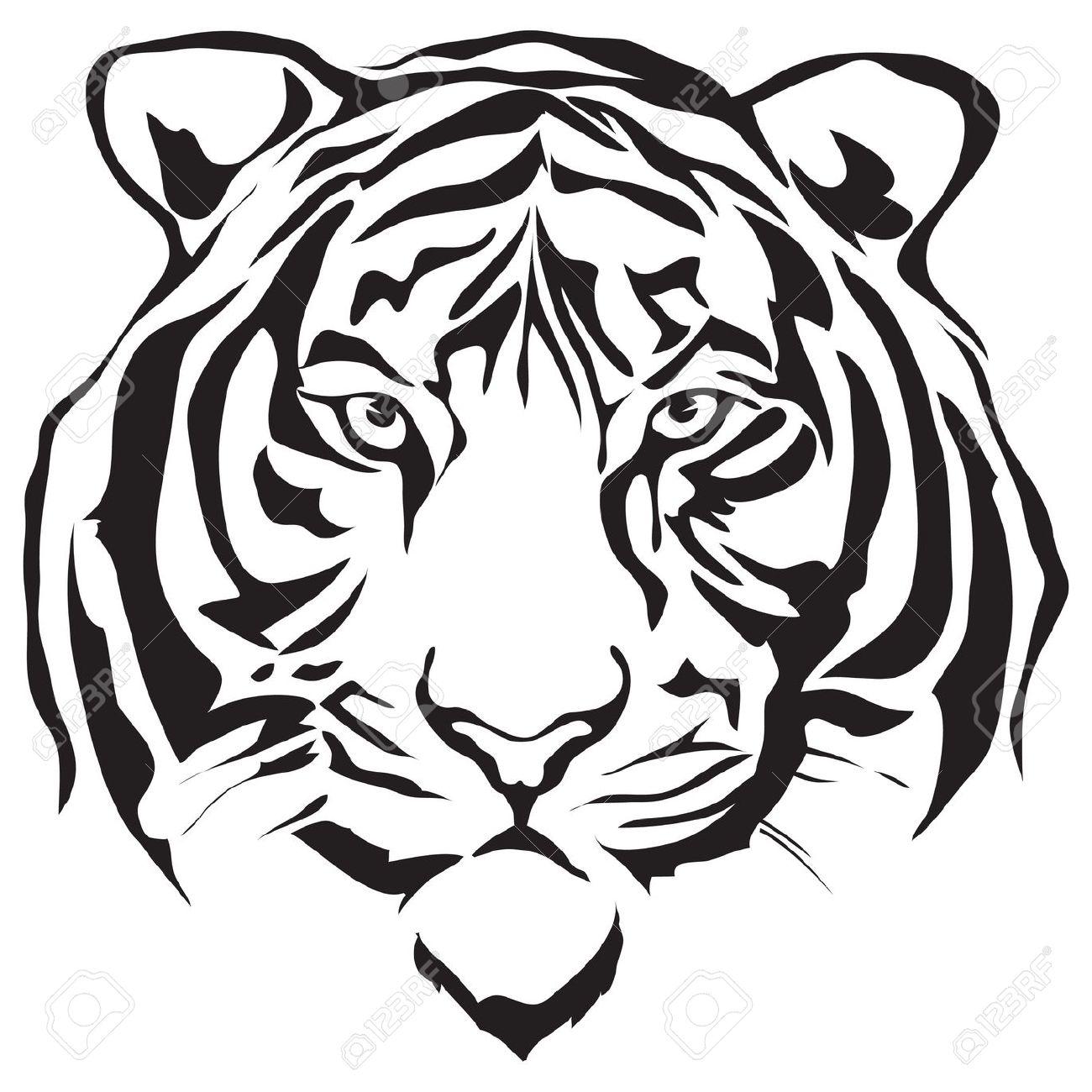 1300x1300 White Tiger Clipart Head