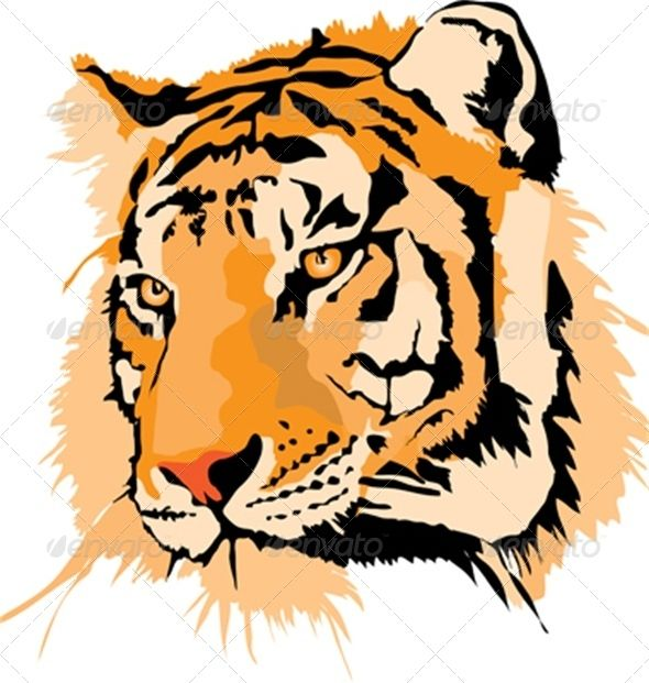 Tiger Head Cliparts