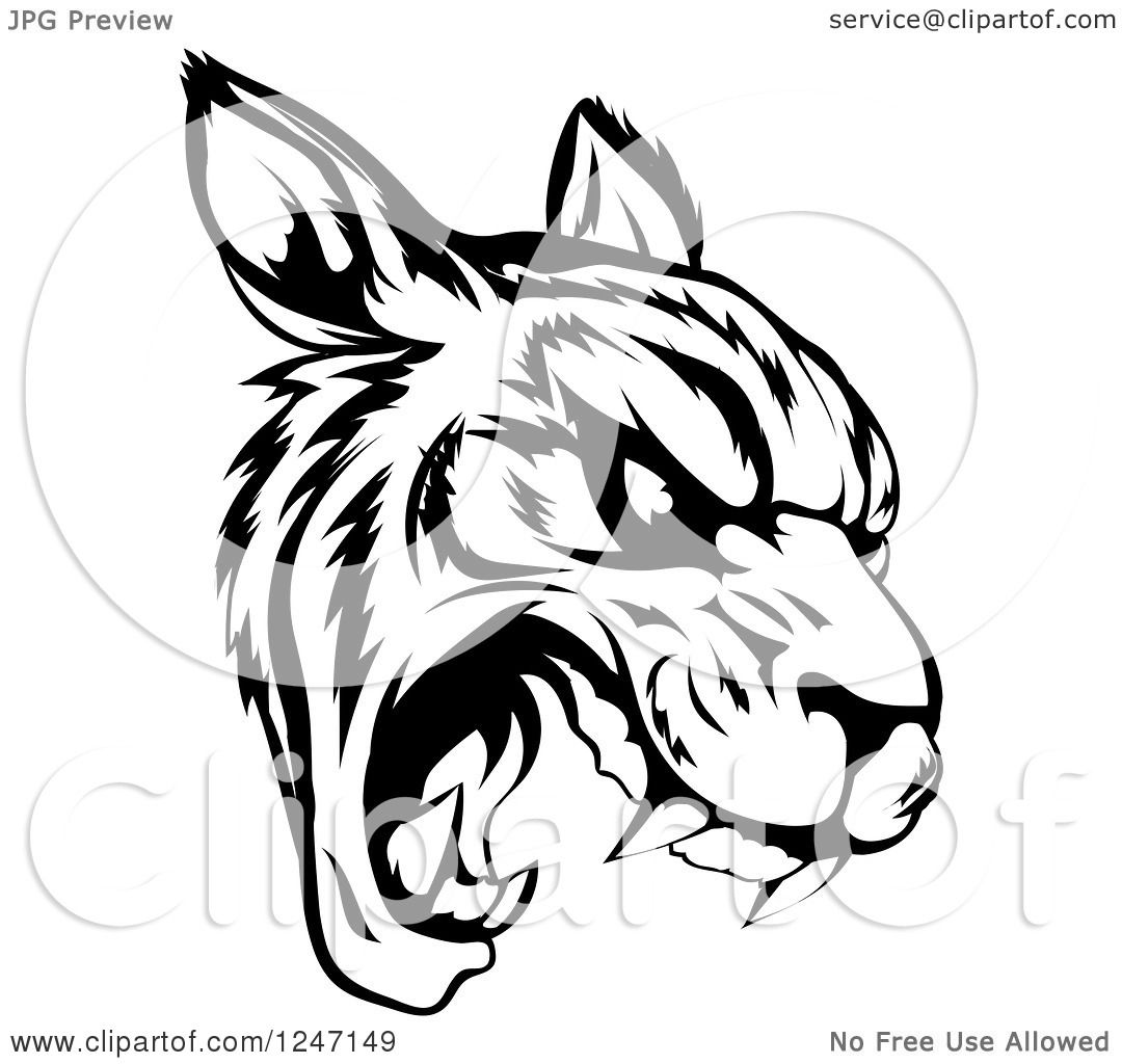 1080x1024 Clipart of a Black and White Roaring Tiger Mascot Head