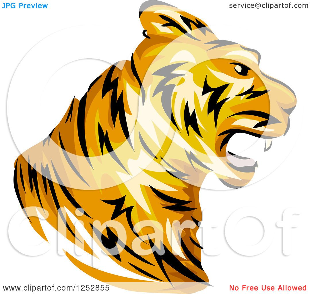 1080x1024 Clipart of a Roaring Tiger Head in Profile
