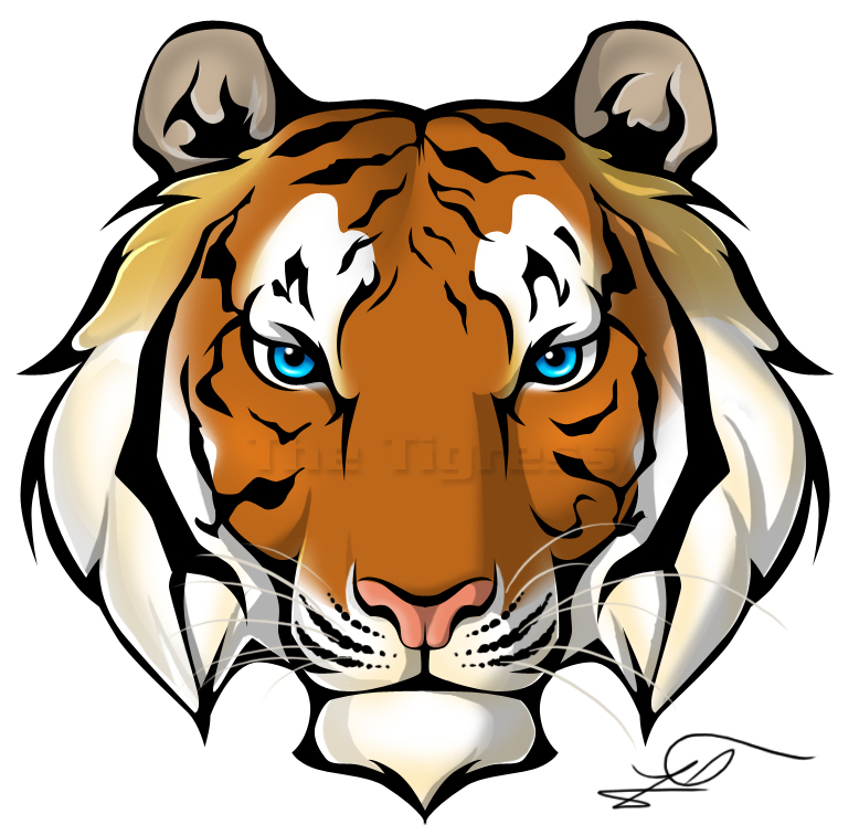 778x756 Free Tiger Face Clipart Image